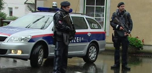 Vienna police officers